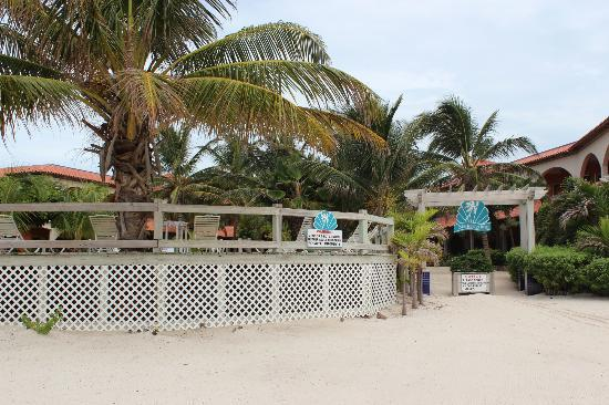 SunBreeze Hotel: View from the beach side of the hotel