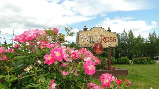 ‪Auberge Wild Rose Inn‬