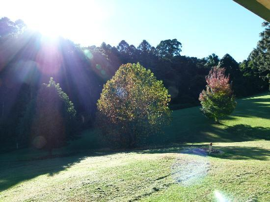 Bunya Mountains Accommodation: View from our balcony