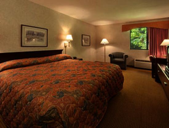 Super 8 West Springfield / Route 5: Standard King Bed Room