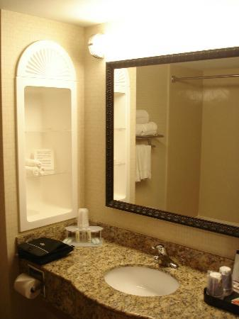 Holiday Inn Express Hotel & Suites Rochester: Bathroom