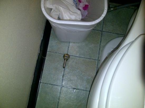 America's Best Value Inn: Coud not keep the handle on the toilet to stay on, toilet ran the whole time.