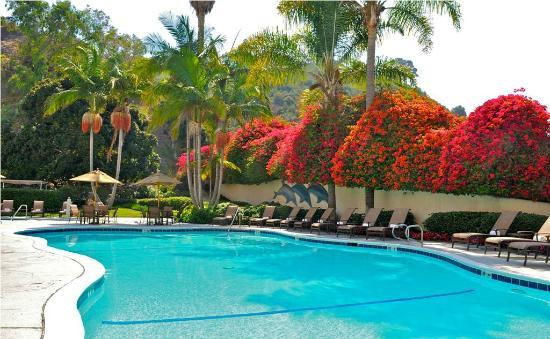 Sheraton Mission Valley San Diego Hotel: Outdoor Pool for your San Diego Enjoyment