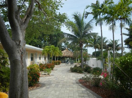 Marco Island Lakeside Inn: Auenanlage