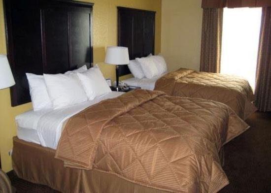 Comfort Inn Near SeaWorld: Guest Room