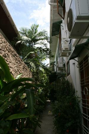 The Allamanda: View of the wall around the property