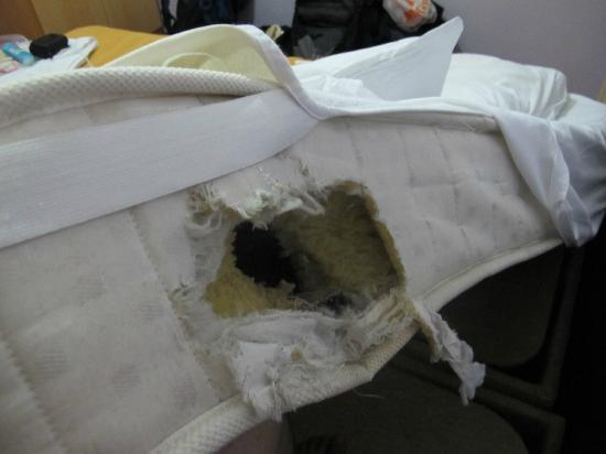 Istanbul Sydney Hostel: Hole in the mattress ??? What the hell...!?!?!