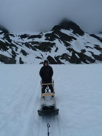 Knik River Lodge: Dog Sledding