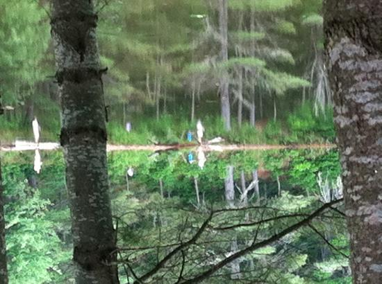 Northern Outdoors Adventure Resort: The view from our cabin