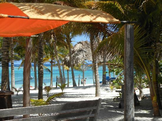 Hotel Akumal Caribe: Another view of the beach