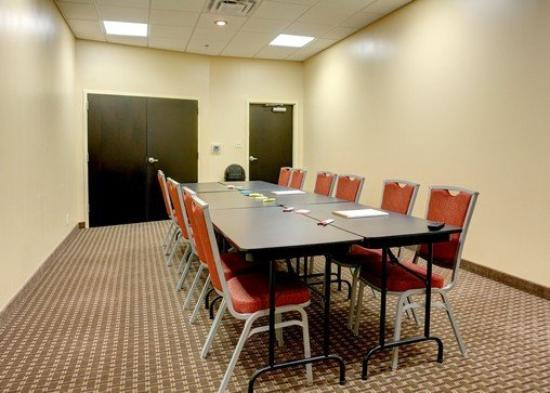 Comfort Suites Kingsport: Meeting Room