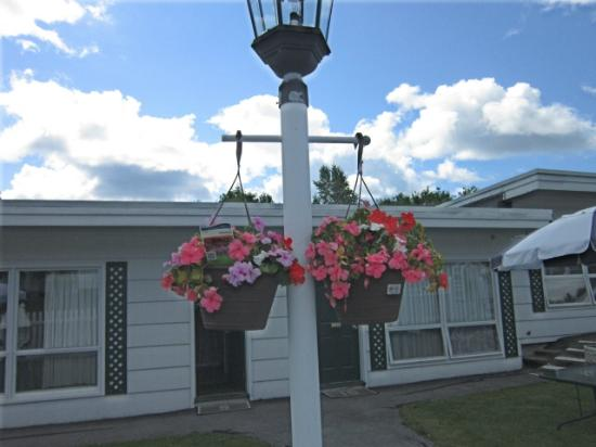 Claddagh Motel & Suites: Flowers outside our room
