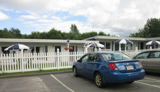 Claddagh Motel & Suites 사진