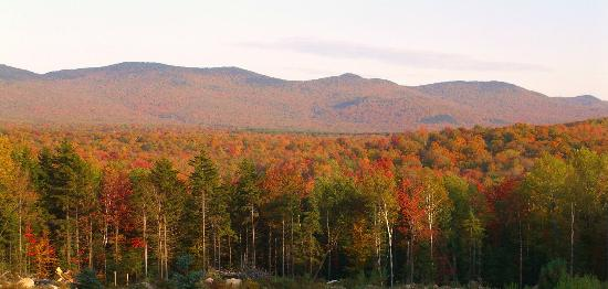 Robert Frost Mountain Cabins: Autumn view