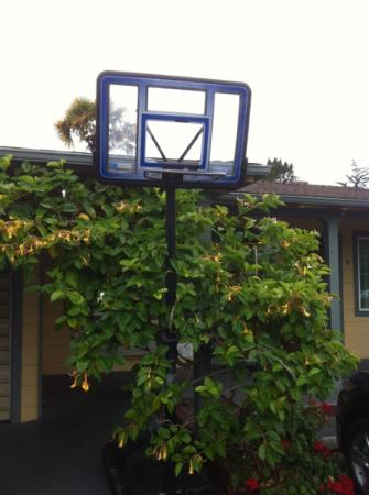 Monterey Surf Inn: auch der Basketballkorb ist kaputt