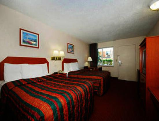 Super 8 North Palm Beach: Two Bed Guest Room