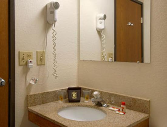 Super 8 Motel Lee / Berkshires / Outlet Area: Bathroom