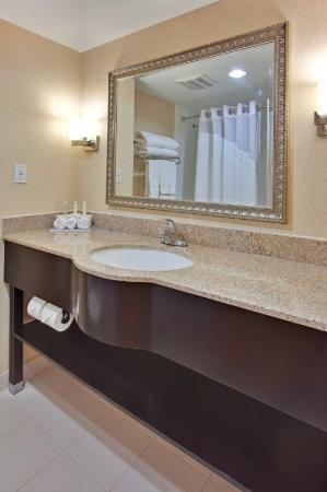 Holiday Inn Express Hotel & Suites Newmarket: Guest Bathroom