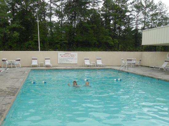 Red Roof Inn Knoxville Central: Pool