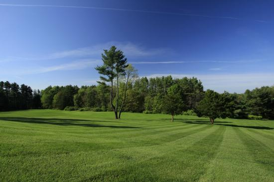 Wheatleigh: Beautifully manicured main lawn