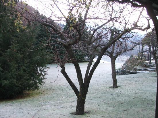 : The frost in the morning