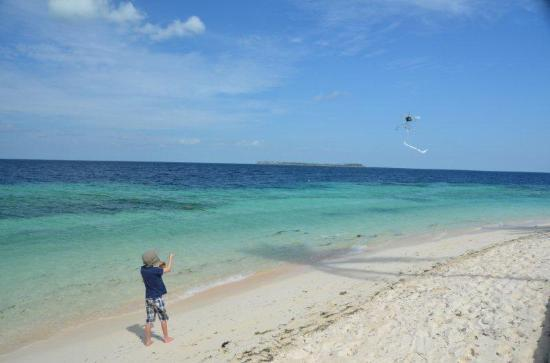 Wakatobi Dive Resort: Great for flying kites