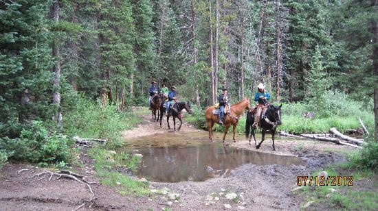 Waunita Hot Springs Ranch: A mountain ride