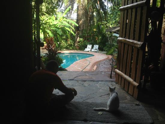 La Hacienda Tropical: Ronny and Cookie looking out toward the pool