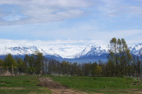 Seaside Farm: View from the property to Grewingle glacier