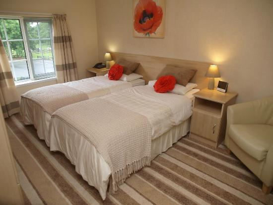 Ballycarton House: Twin ensuite room