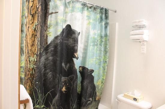 Juneau Hotel: Loved the shower curtain