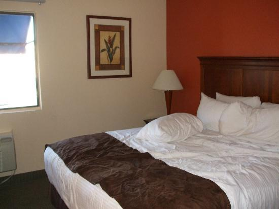 BEST WESTERN McCarran Inn: Nice big comfortable room