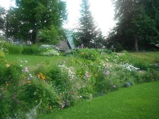 Revelstoke Bed and Breakfast: Garden