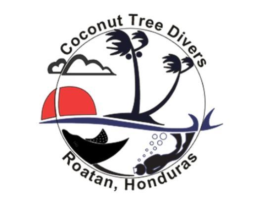 Coconut Tree Divers