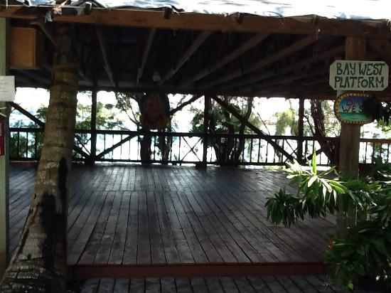 One of the outdoor yoga platforms picture of sivananda for How to build an outdoor yoga platform