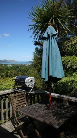 Fern Lodge: Cabin balcony