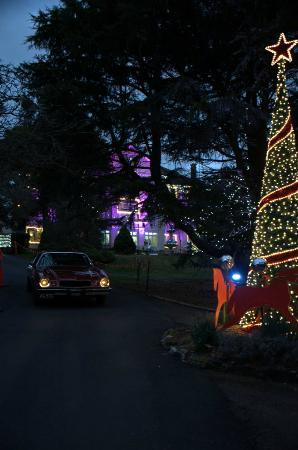Robertson, Australia: Grounds Decorations for Christmas In July at Fountaindale