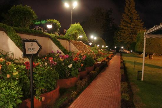 Savoy Hotel Ooty: Look @ the lawn in night