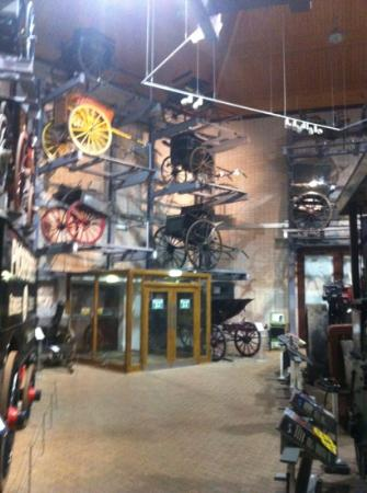 Stockwood Discovery Centre (Luton, England): Hours, Address, Top-Rated Specialty Museum Reviews