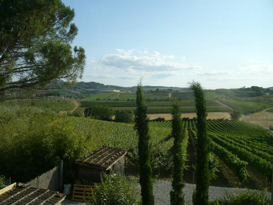L'Orto di Panza: fantastic view from our fabulous room