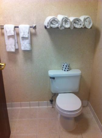 BEST WESTERN PLUS Four Presidents Lodge: clean bathroom