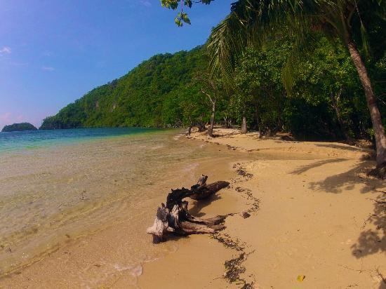 Sangat Island Dive Resort: Kalitang Beach from in front of cottage