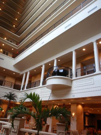 Embassy Suites Tampa - Downtown Convention Center: Inside view of hotel 1