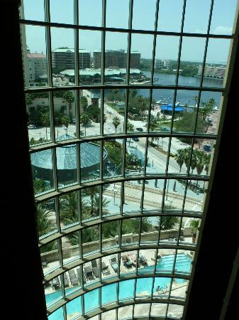 Embassy Suites Tampa - Downtown Convention Center: View from main entrance