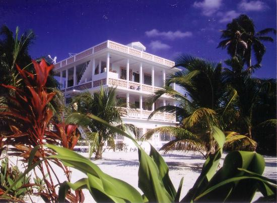 Photo of Tree Tops Guesthouse Caye Caulker