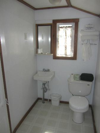 Lakeside Motel & Cabins: Cabin bathroom is simple. Only a shower.