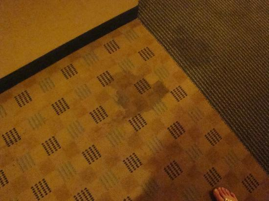 Pheasant Run Resort and Convention Center: Carpet in hallway. Do you think it might need cleaned or replaced?