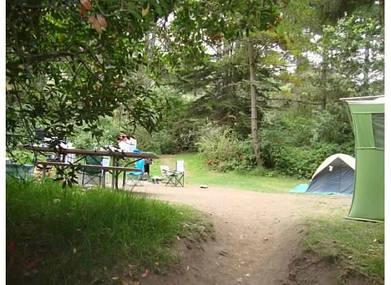 Foto   s van Plaskett Creek Campground     foto   s Hut KampeerplaatsPlaskett Creek Campground Site 25