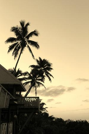 Sunrise Beach Bungalows: View at the front of the property