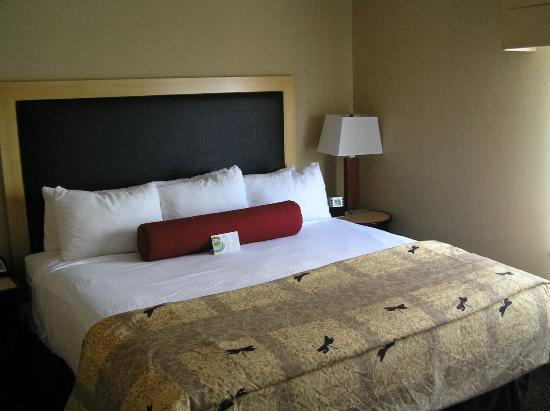 Cambria Suites Indianapolis Airport: Bedroom